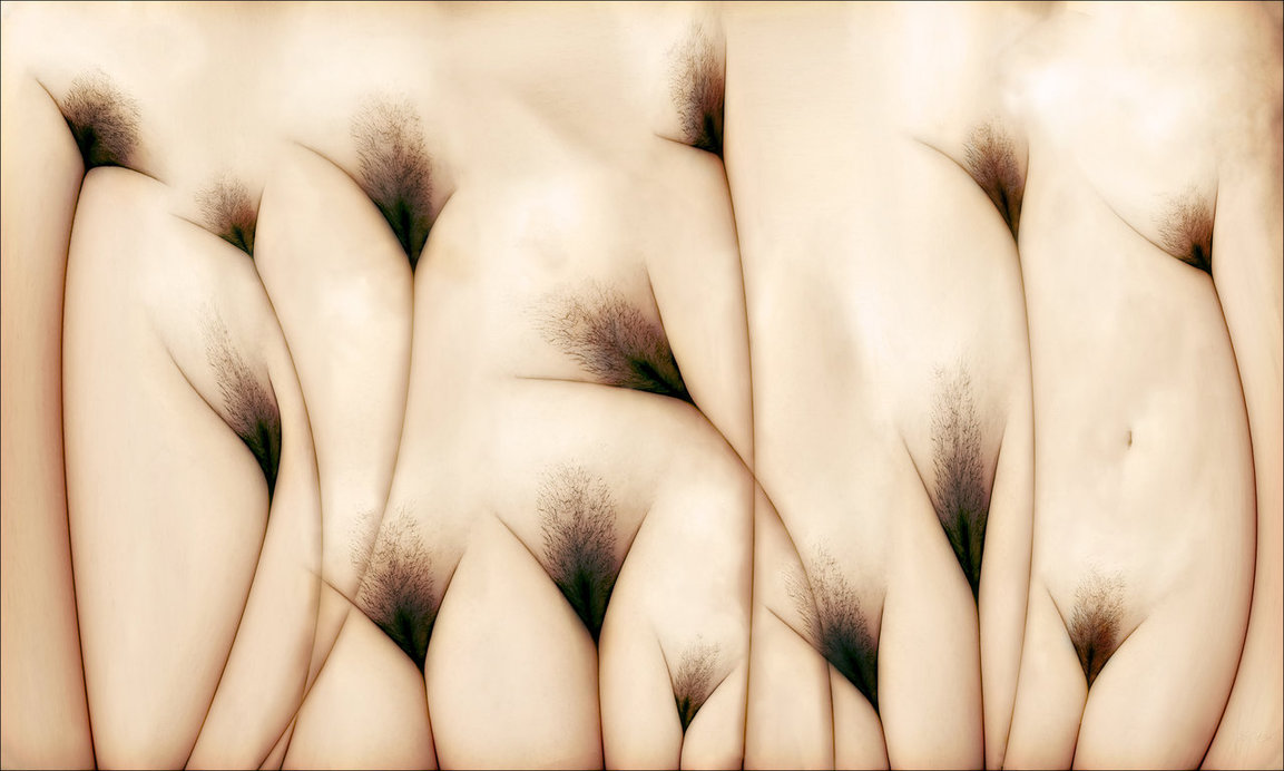 the_vaginas_field_by_twitchkowitz-d47c2s7