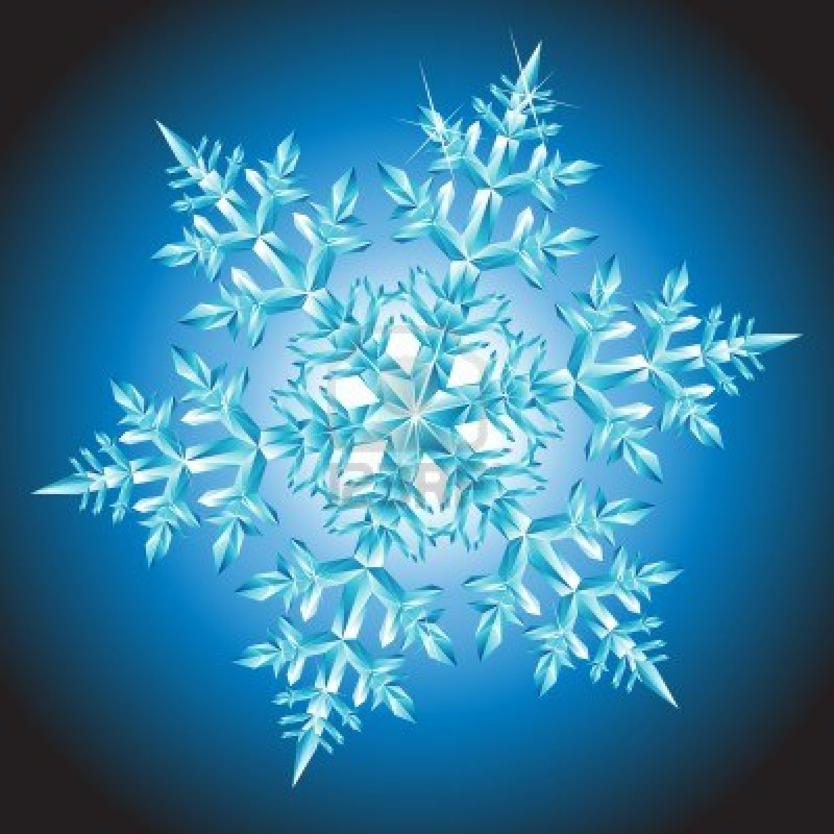 Snowflake-Pictures-13